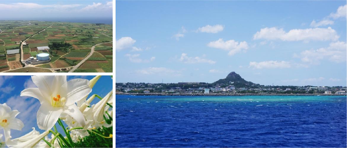 伊江島の風景写真